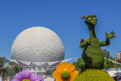 EPCOT  & The Flower and Garden Festival