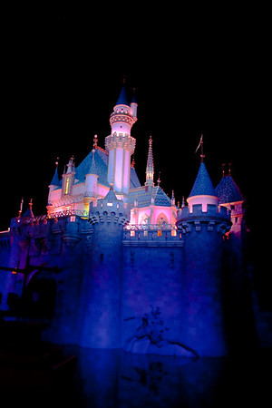 2010 - Jan - 18-24 - Family Disneyland Trip-0283