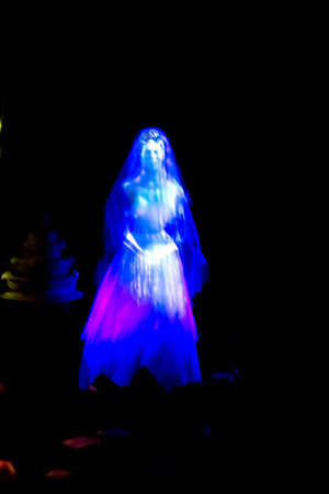 The Bride in the attic in the Haunted Mansion