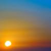 Bird at Dawn