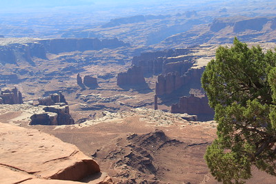 20180715-031 - Canyonlands NP - Grand View Point Overlook