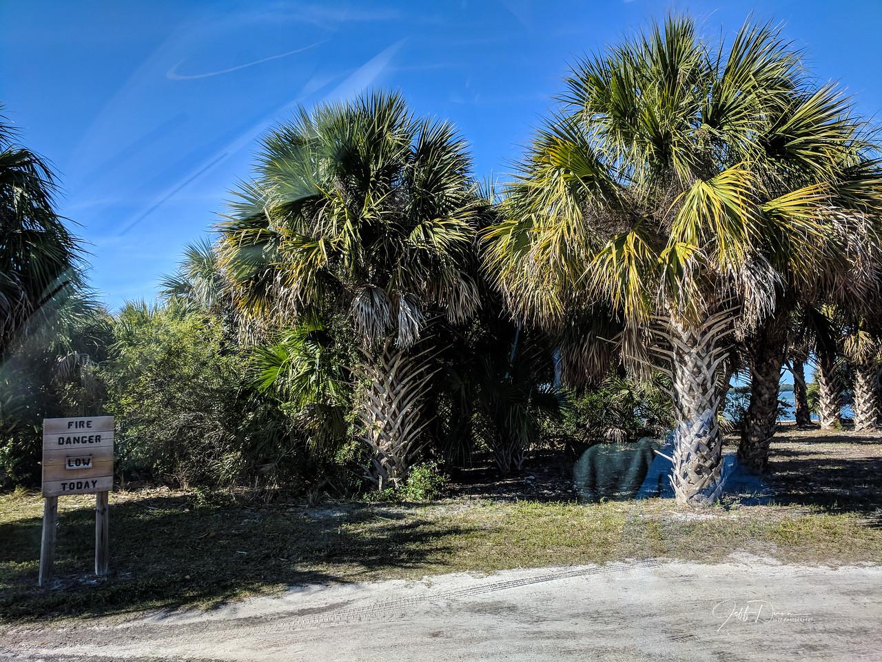 Florida Vacation - Tampa 1-31-2018
