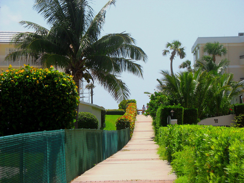 Path to the beach at the end of Dad's street.