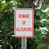 Beware of Alligators. Sign near the pond.