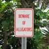 Beware of Alligators. Sign near the pond.
