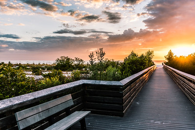 2016 Lovers Key State Park, Florida