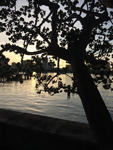 The Palm Beach Lake Trail