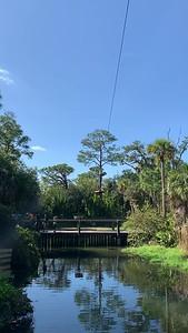 Tree Top Trek
