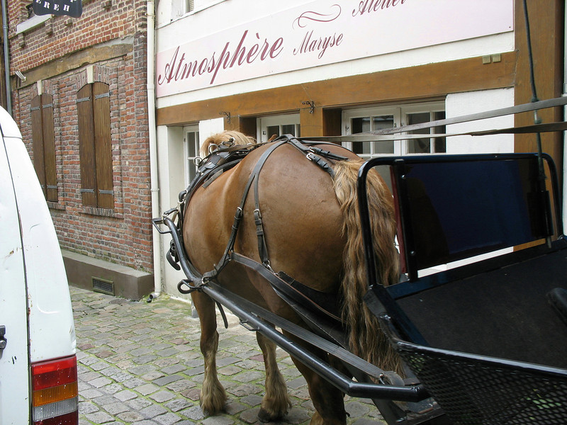 Honfleur street transport.