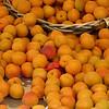 Apricot overflow.