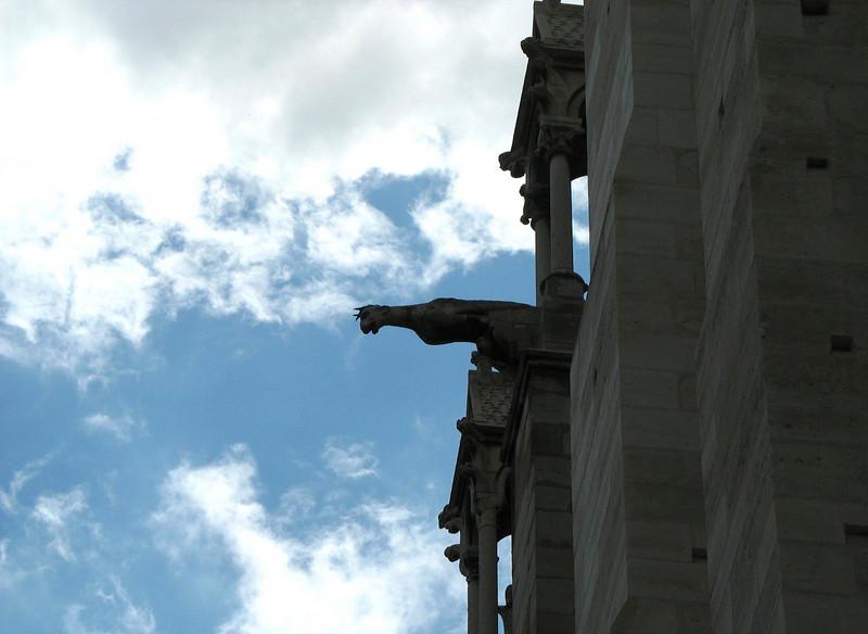Notre Dame gargoyle silhouette.
