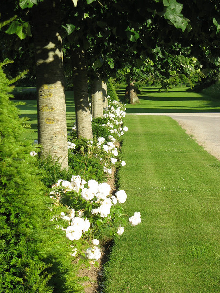 Chateau de Sully grounds.