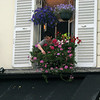 Tending flowers in Montmarte.