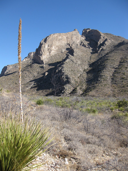 View of the right side of Slaughter Canyon, on the way to the Slaughter Canyon Cave tour