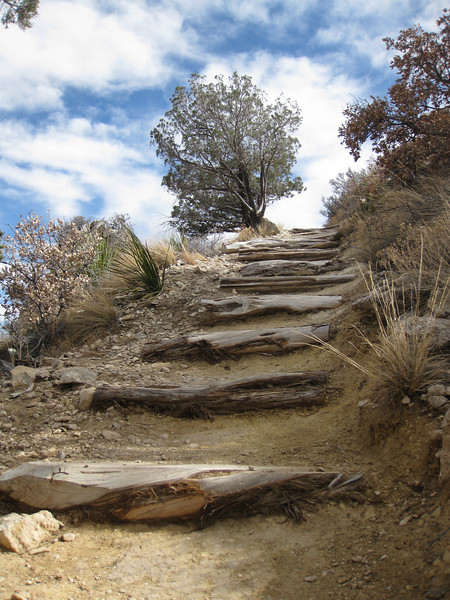 The trail up to Guadalupe Peak (highest point in Texas) starts out steep.