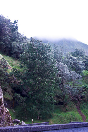 view from Nuuanu Pail Outlook