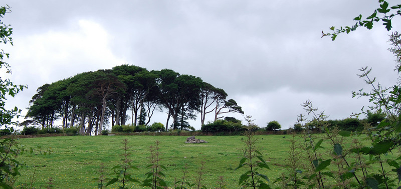 We began our day in Kinsale and along the way we stopped for a walking tour of the Muckross Farm in Killarney.