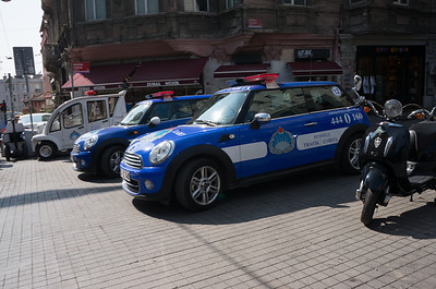 Police Minis