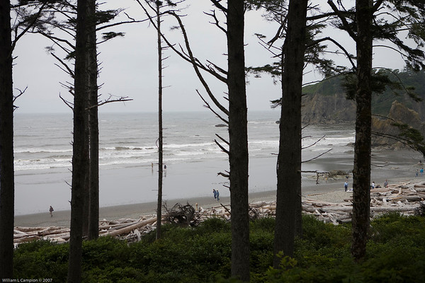 Overcast day at Ruby Beach, North West Pacific Ocean