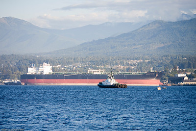 Ocean Freighter in Port Angeles, WA