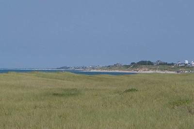 Beach grass at Eel Point Beach