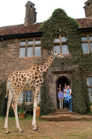 People with Giraffes