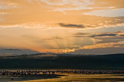 Sunrise over Lake Nakuru