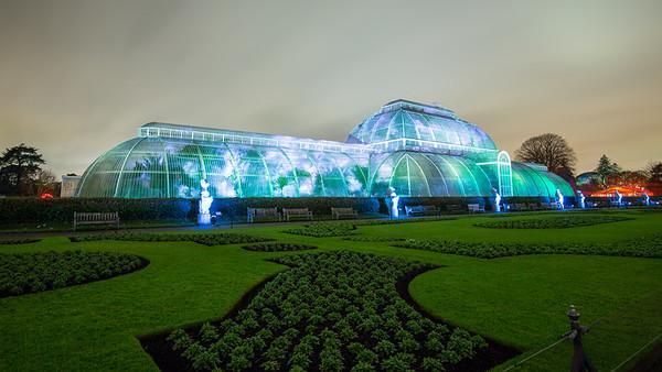 Kew Gardens at Night Winter 2014