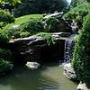 Brooklyn Bot Gardens
