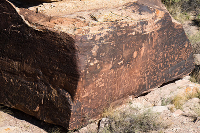 Newspaper Rock, petroglyphs, Petrified Forest National Park