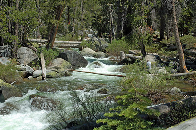 Yosemite Creek off of Tioga Road