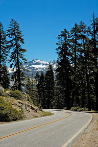 Mount Hoffman with Tioga Road in the Foreground
