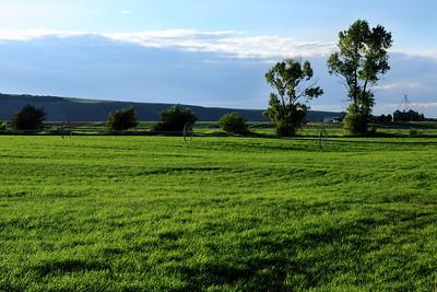 Teton Valley Farm