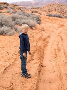 Sandy Tracks