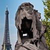 Paris 2010 -487