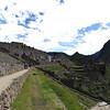 253 Pan Machu Picchu