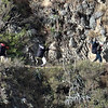 225 Inca Tail Hikers1