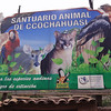 308 Animal Sanctuary