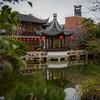 Chinese garden in Portland.