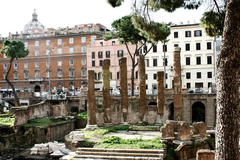 Temple remains in  Largo di Torre Argentina.