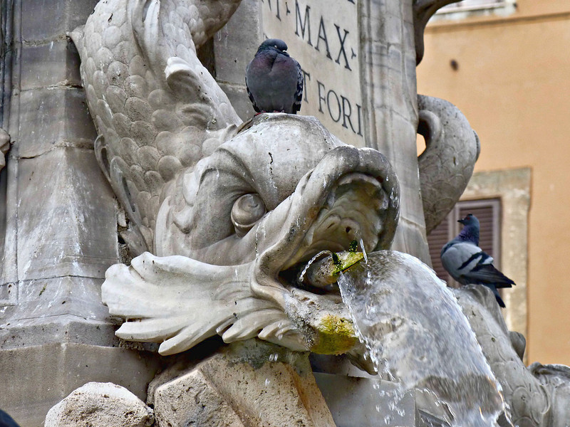 Detail of the Fontana del Pantheon (1575) in front of the Pantheon.