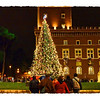 Christmas tree in Piazza Venezia.