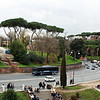 Looking across from the Colosseum, Palatine Hill.