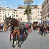 Horses & carriages awaiting customers in Piazza di Spagna.