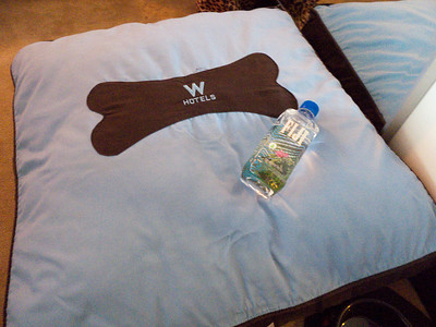 Suki's bed and Fiji water from the W San Diego