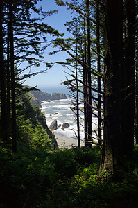 View from a hiking trail in Southern Oregon