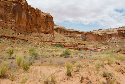 Looking back to the trail's exit out of the canyon
