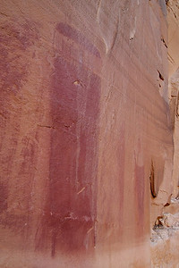 One of the many pictographs