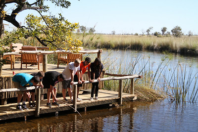 """Fishing"" on the Okavango Delta"