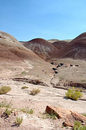 Bentonite Hills 1